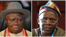 Policemen who invaded Clark's house should not have been dismissed - Falana declares