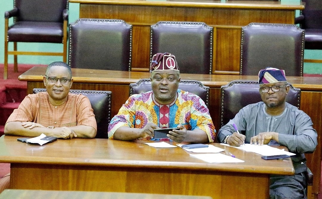 Lagos lawmakers dump Ambode, declare support for Sanwo-Olu 24 hours to primaries