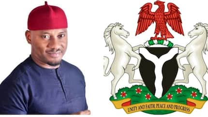 I can't wish anybody a Happy Independence Day - Nollywood actor turned politician Yul Edochie says