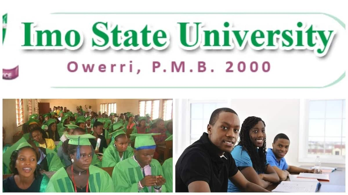 IMSU school fees for non - indigenes and indigenous students 2017