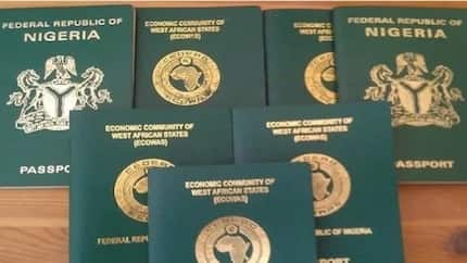 As from January 2018, no national ID number, no international passport - Immigration