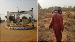 Damned without Dams: How irrigation projects get abandoned in Nigeria (Investigation)