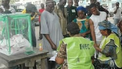 Just in: INEC fixes date for Anambra central senatorial election