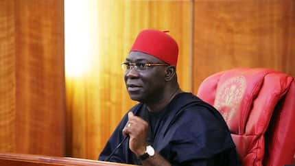 How Nigeria can stop desperation in the political system - Ekweremadu