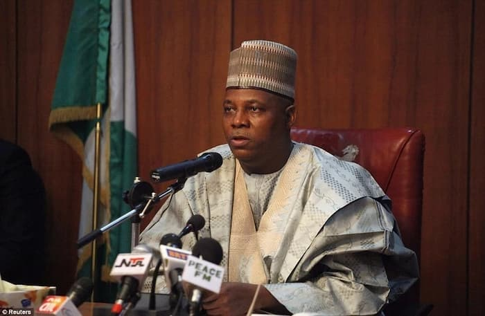 Image result for Borno State Governor, Kashim Shettima Raises Alarm Over Attacks