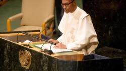 2019: Buhari yayi wa Majalisar Dinkin Duniya alkawarin tabbatar da gaskiya da adalci a zabe mai zuwa.