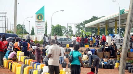Submit N800 billion supplementary budget for fuel marketers - Lawmakers tell presidency