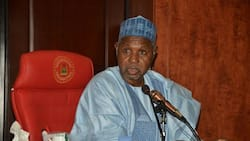 Masari to Katsina residents: Acquire arms to defend yourselves