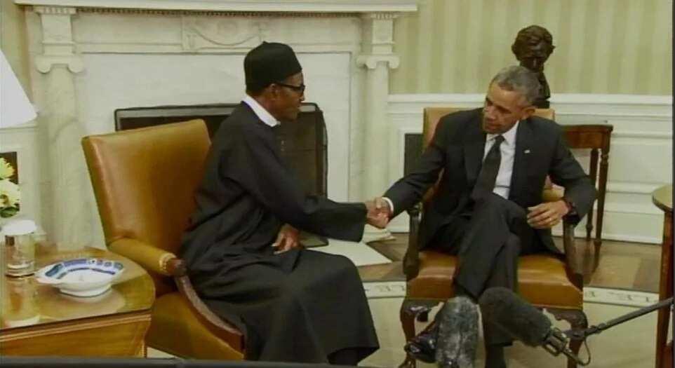 Obama, Buhari Never Discussed Same-Sex Marriage - Adesina