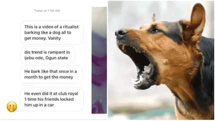 Man barks like dog in Ogun once in a month for money ritual (video)