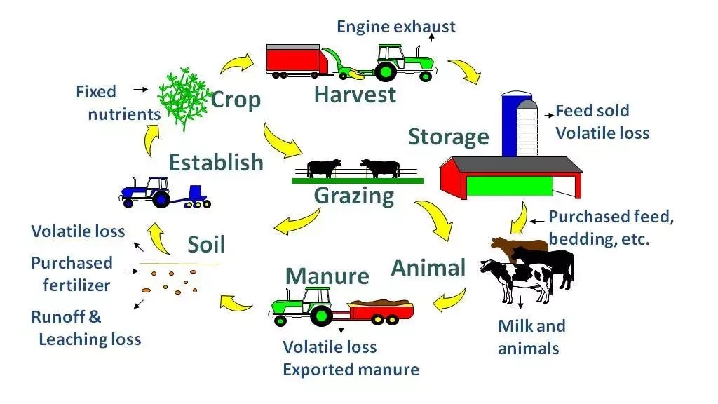Advantages of integrated farming system
