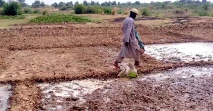 Nigeria faces no threat of famine – Agric Minister, Ogbeh