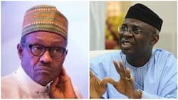 Buhari's shoot-on-sight order has not proved to be sufficient - Pastor Bakare declares