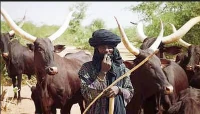 Fulani herdsmen and farmers clash gets worse as drought kicks in