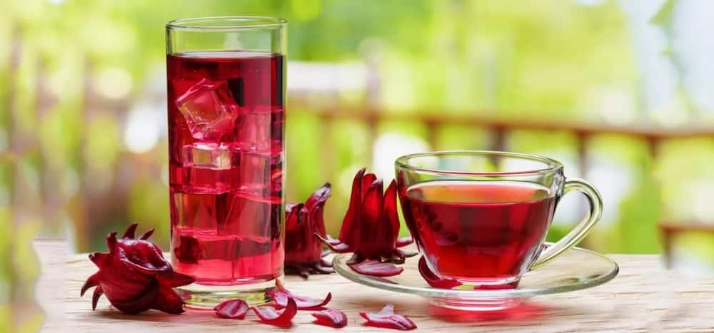 What Are Hibiscus Tea Benefits For Hair Legitng