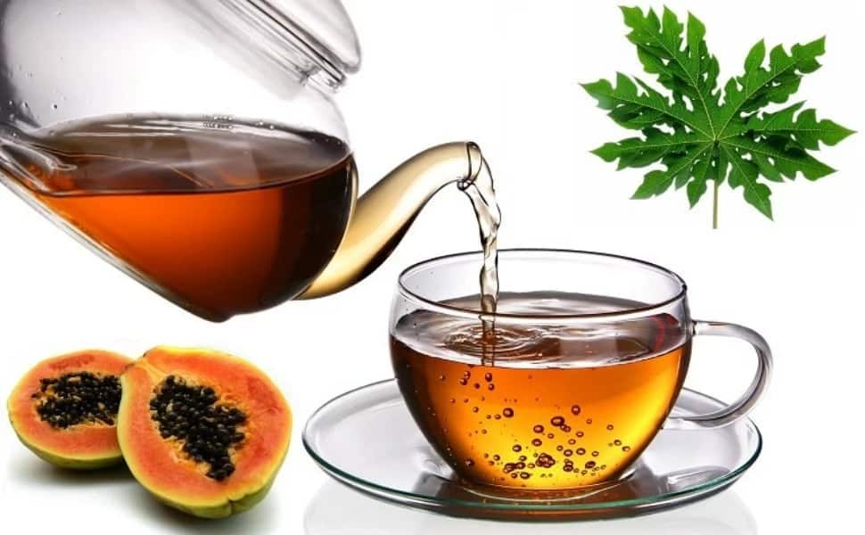 Pawpaw leaf tea
