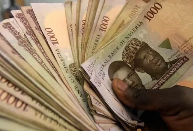 Businesses to start with 100k in Nigeria ▷ Legit ng