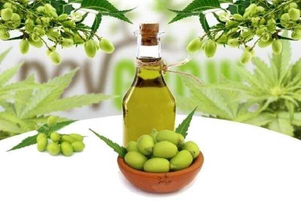 Neem oil side effects