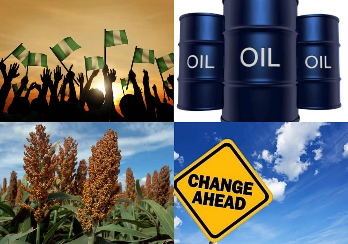 What is national development for Nigeria?
