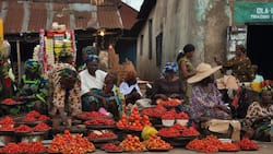 Market Survey: People are scared to invest because of ongoing crisis in Nigeria - Traders reveal