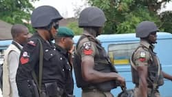 Robbers murder reverend father, flee with his car in Imo
