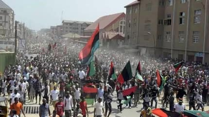 IPOB launches 'Biafrexit', urges British govt to guide President Buhari