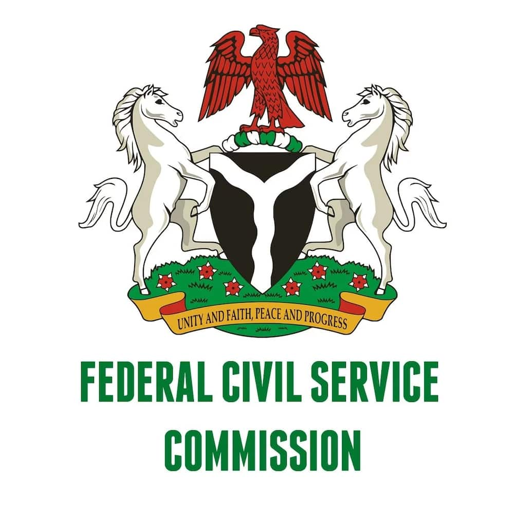 Federal civil service commission salary structure ▷ Legit ng