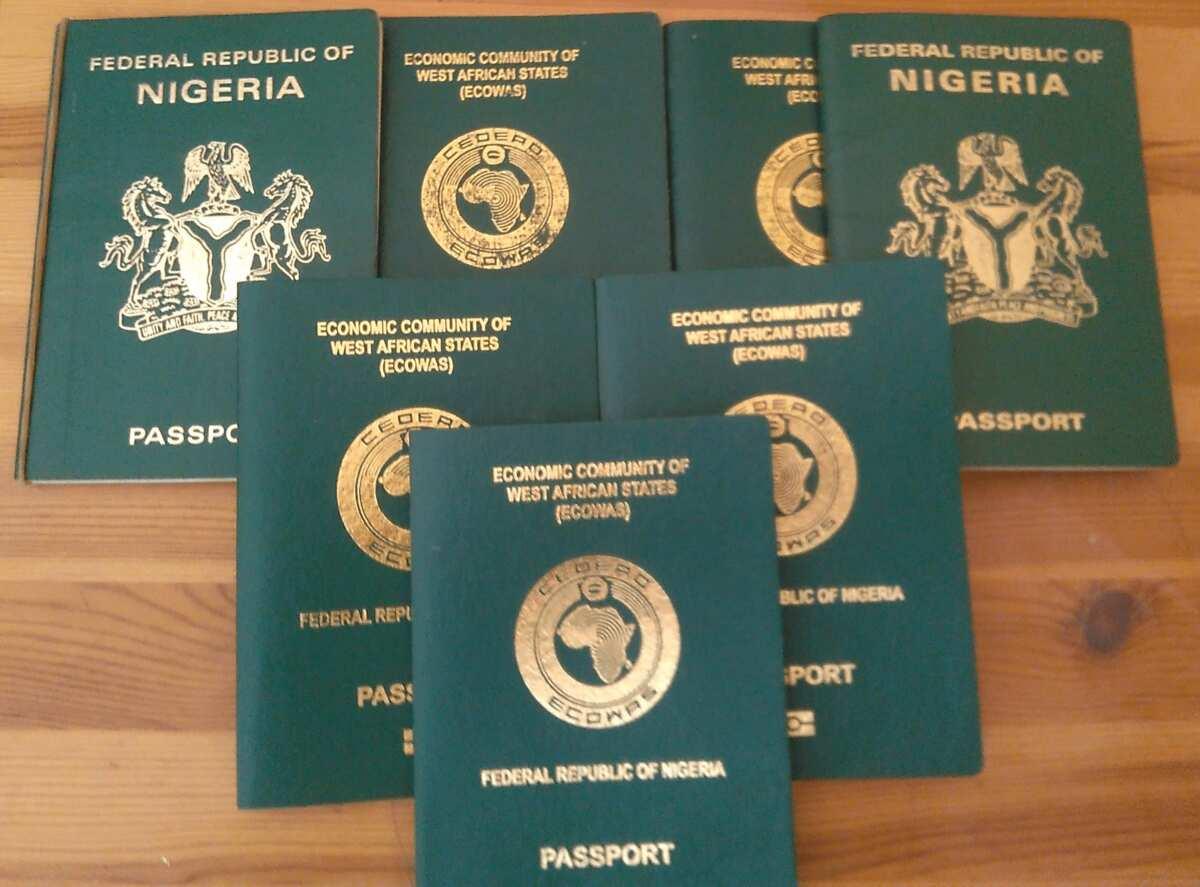 Nigerian passport renewal fee in 2018 ▷ Legit ng