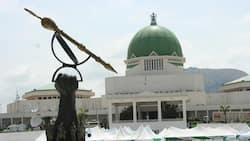 Niger Delta leaders give red card to ALL south-south lawmakers