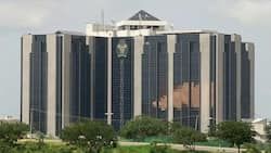 CBN insists Crypto trading is illegal transactions, asks court to freeze accounts of fintech firms