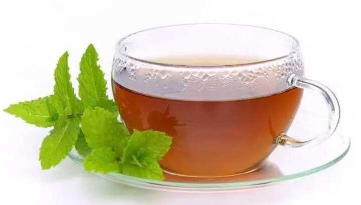 tea mint leaves