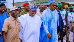 2019: Buhari's integrity will pave way for his re-election - APC chieftain