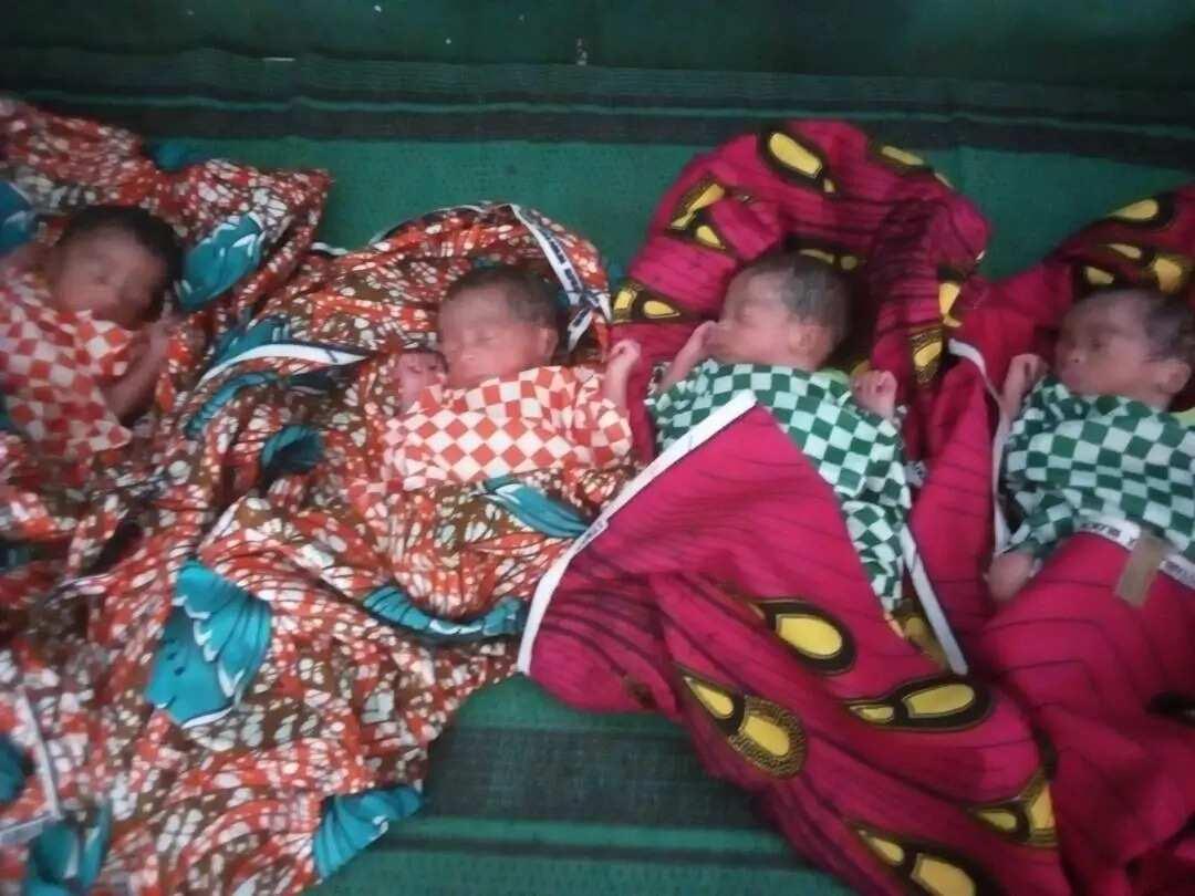 A photo of the quadruplets. Credit: Zayyanu Mukhtar