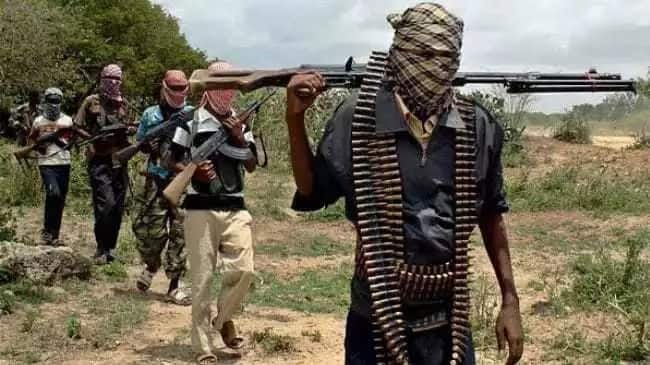 Boko Haram suicide attacker blows himself up in Cameroon