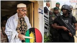 Why Nnamdi Kanu should be sent back to jail immediately - Northern leader