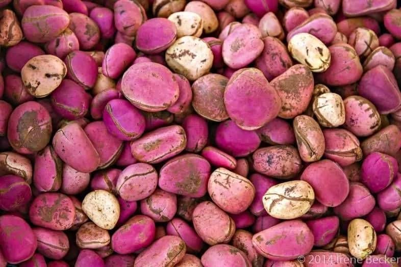 Wonderful kola side effects: Are there any? ▷ Legit ng