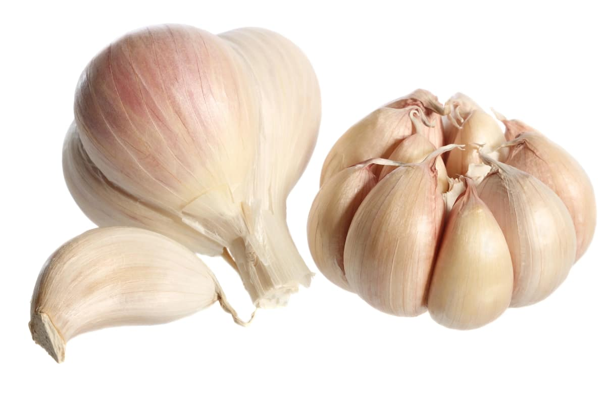 Top 15 Health Benefits of Ginger and Garlic Mixture [Updated