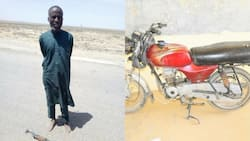 Boko Haram is in disarray - Shekau's strongman surrenders, gives Nigerian Army information (photos)