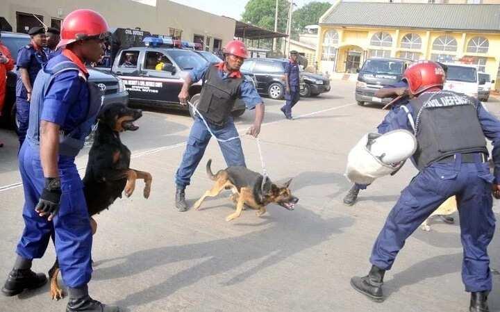 Nigerian Civil Defence Corps