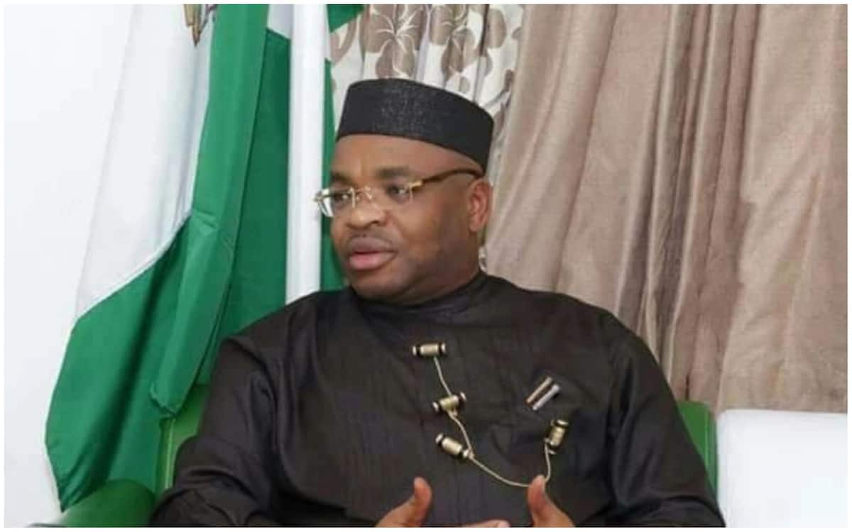 Akwa Ibom imports 2,000 cattle from Brazil for ranching - Legit.ng