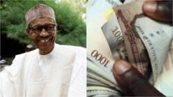 Gwamnatin Buhari za ta fara biyan daliban digiri da NCE kudin kashewa