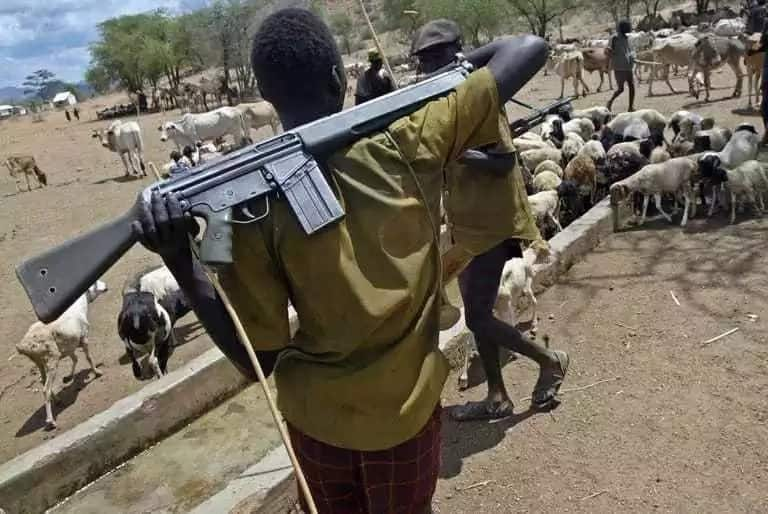 ACF condemns herdsmen attacks in Enugu