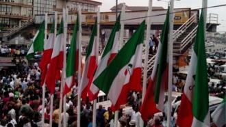 Latest News in Nigeria | Read on Legit ng ▷ 11 08 2019