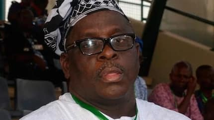 Kashamu files fresh suit to stop extradition