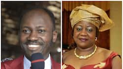 You have no business coming close to a pulpit - Buhari's aide slams Apostle Suleman