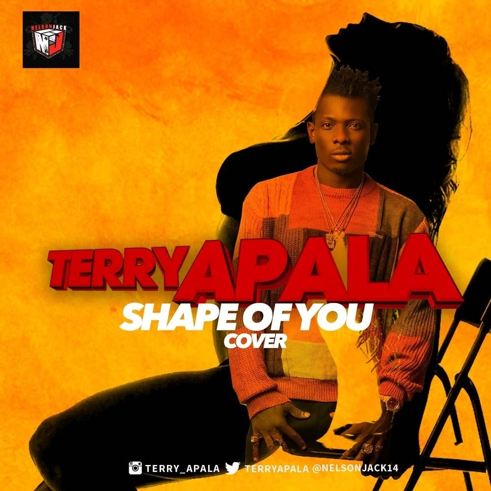 Terry Apalas cover of Shape of you by Ed Sheeran