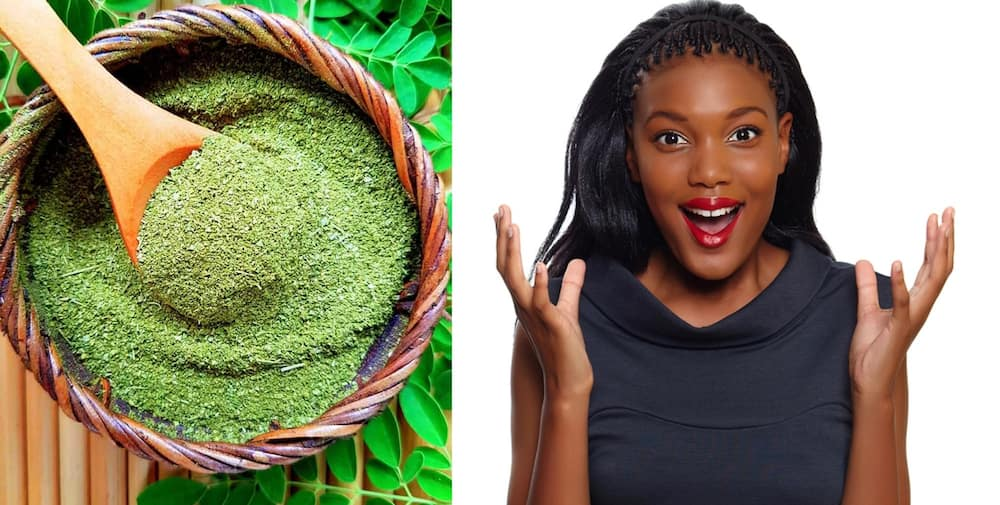 How to use moringa powder ▷ Legit ng