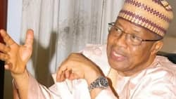 I am disturbed with the rate of deaths caused by armed bandits, natural disasters - IBB
