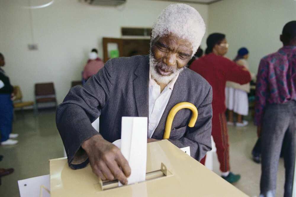 Old man voting