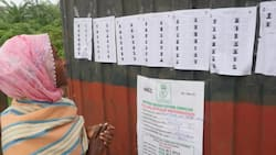 Osun election: INEC officials failed to record number of accredited voters - PDP witnesses tell tribunal